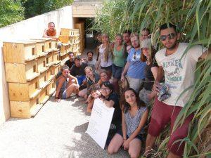 campo de voluntariado en GREFA 2015