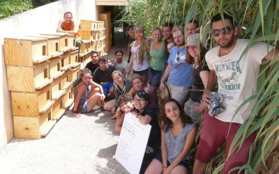 """Campo de voluntariado en España: """"¡Se hace tan corto!"""""""