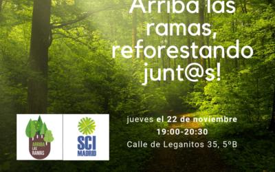 Charla medioambiental: Arriba las ramas, reforestando juntos!