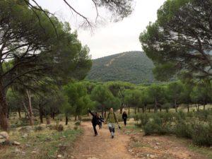 Ecosfera voluntariado local medioambiente, servicio civil internacional, voluntariado, SCI Madrid, campos de voluntariado, senderismo, Valdemaqueda, puente romano Mocha