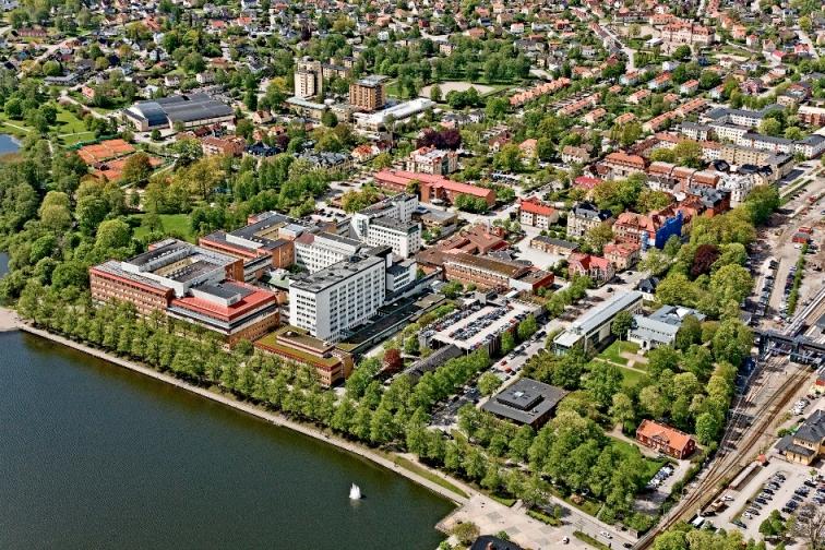URGENTE: Voluntariado CES en Suecia promoviendo proyectos internacionales
