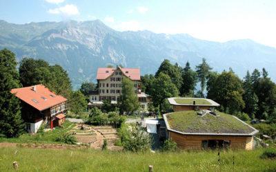 Voluntariado CES  de 12 meses en una comunidad ecológica en Suiza