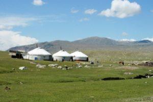 voluntariado-internacional-Mongolia-SCI-Madrid