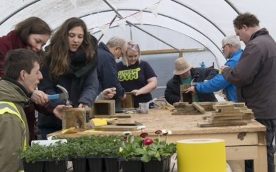 Voluntariado CES de 12 meses en Irlanda del Norte – Glencraig Lifesharing Project
