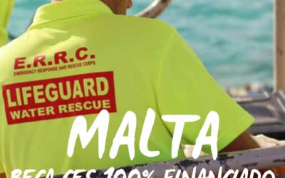 Oferta CES Malta – corta o larga duración