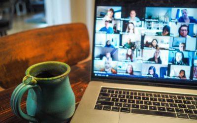 Experiencia Campo de Voluntariado Online 💙